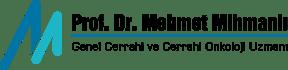 Prof.Dr. Mehmet Mihmanlı